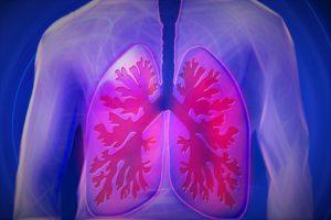 Dýchací cesty / kašel