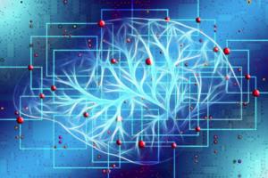 Záhada lidského mozku