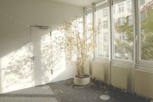 Údržba plastových oken